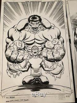 Hulk 13 Original Cover Art McGuinness Hulk Banner