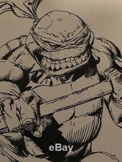 Teenage Mutant ninja Turtle Blank Sketch Variant-Original Art David FINCH
