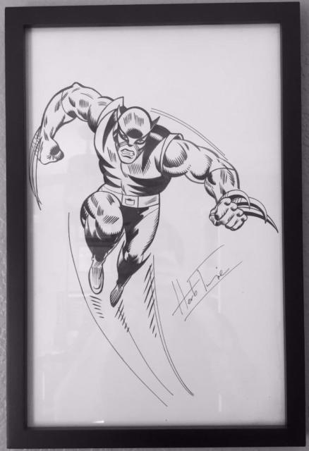Wolverine Illustration By Herb Trimpe! Marvel Original Wolverine! X-men